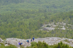 Hikers above the tree line.